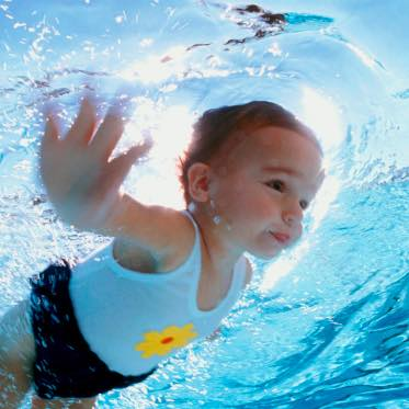 Solar Hot Water Pool Heating Apricus Australia